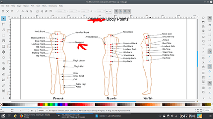 body-points